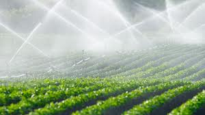 1._fresh_water_for_irrigation