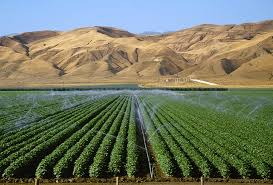 2._fresh_water_for_irrigation